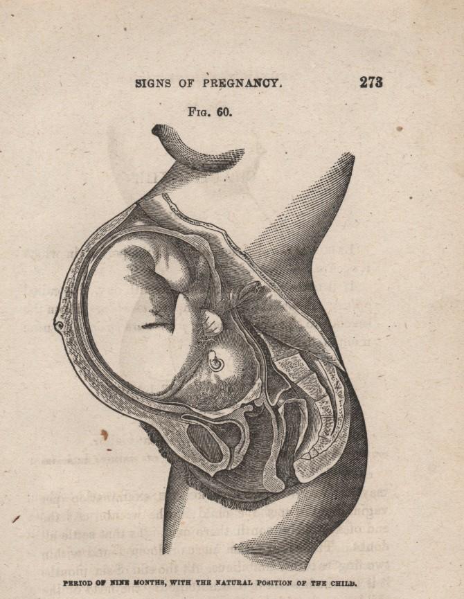 Els fetus no respiren