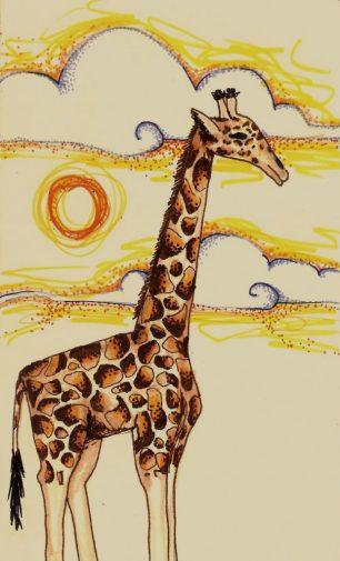Per què les girafes tenen el coll tan llarg?