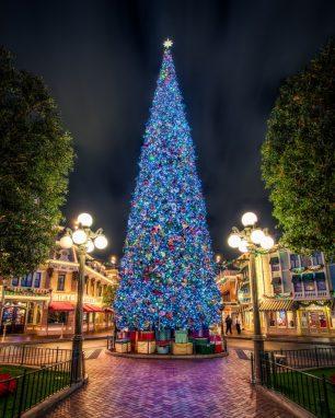 Origen de l'arbre de Nadal