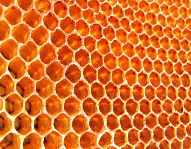 Per què les abelles fan els panells de la mel de forma hexagonal?