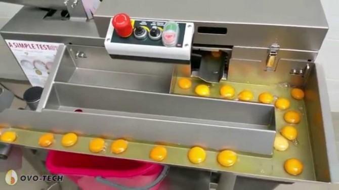 Màquina separadora de clares i rovells d'ou
