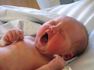 Per què els bebès humans són tan indefensos al néixer?
