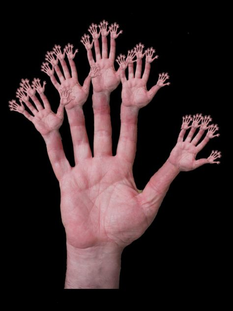 Fins quin número podries comptar amb 10 dits?