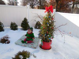 És millor un arbre de Nadal natural o un d'artificial?