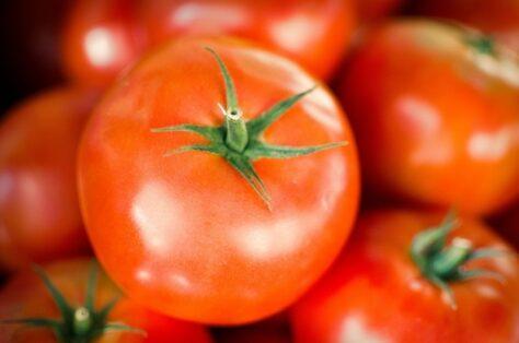 El tomàquet, és un fruita o una verdura?