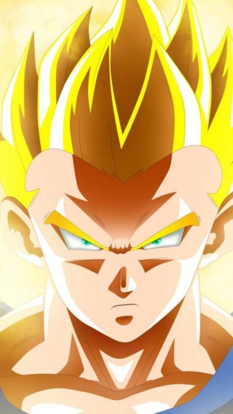 El dia de Son Goku al Japó